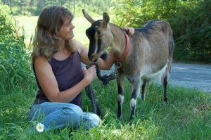 Daisy the dairy goat and farmer Carol Lak