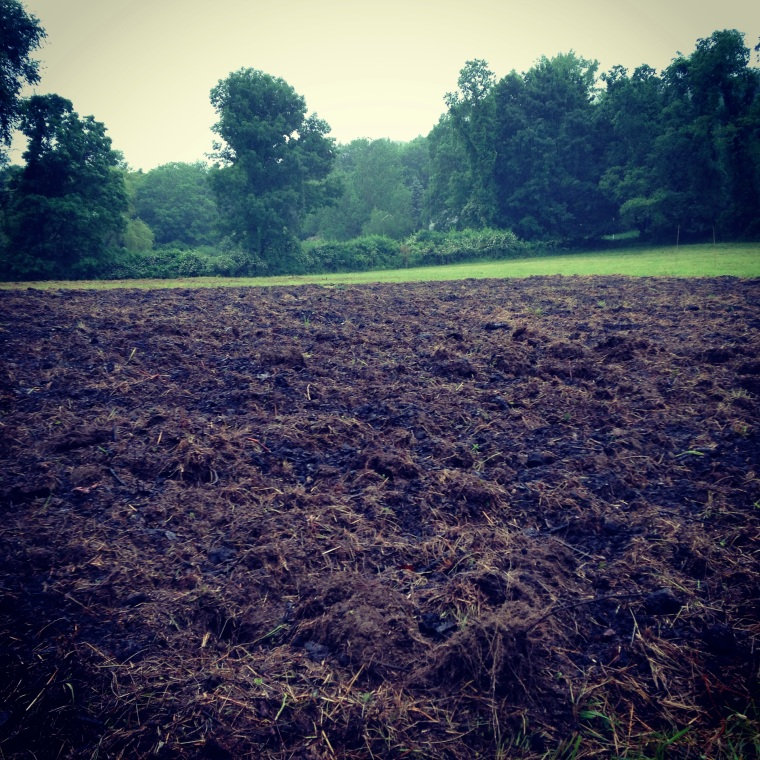 Tilled Soil at Dancing Dog Farm